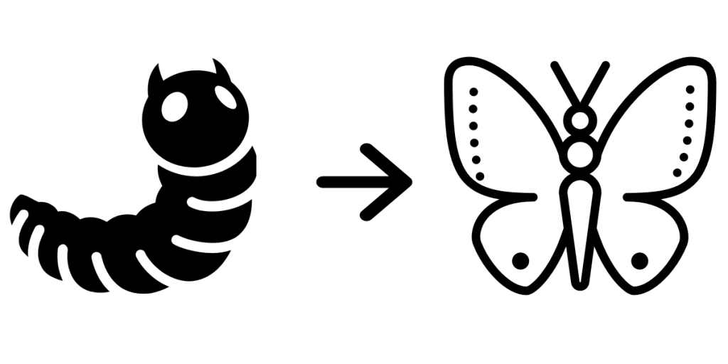 Transformation of caterpillar to butterfly, teens building strong foundation of core coding concepts